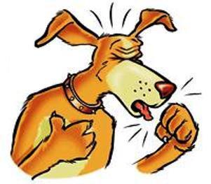سرفه کردن در سگ ها