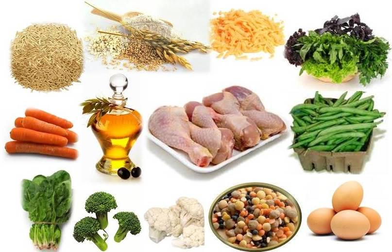 مواد غذایی مفید برای سگ ها