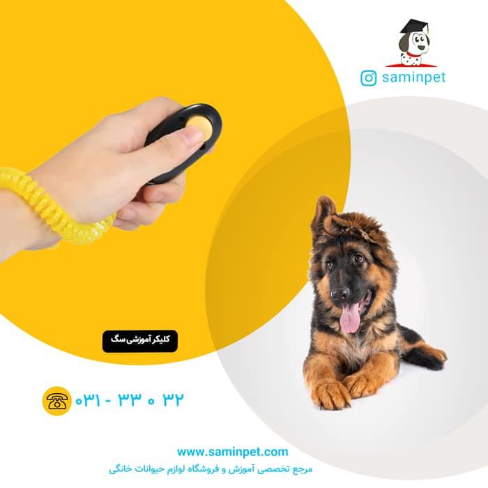 کلیکر آموزشی مخصوص سگ
