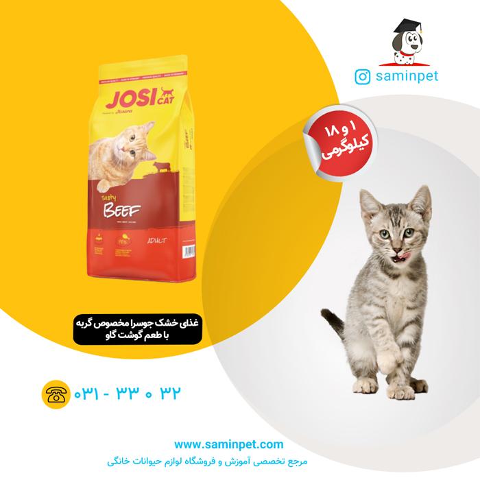 غذای خشک جوسرا مخصوص گربه بالغ با طعم گوشت گاو