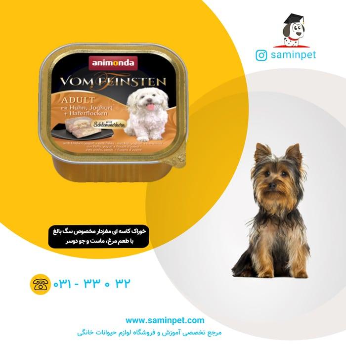خوراک کاسه ای مغزدار مخصوص سگ بالغ با طعم مرغ، ماست و جو دوسر