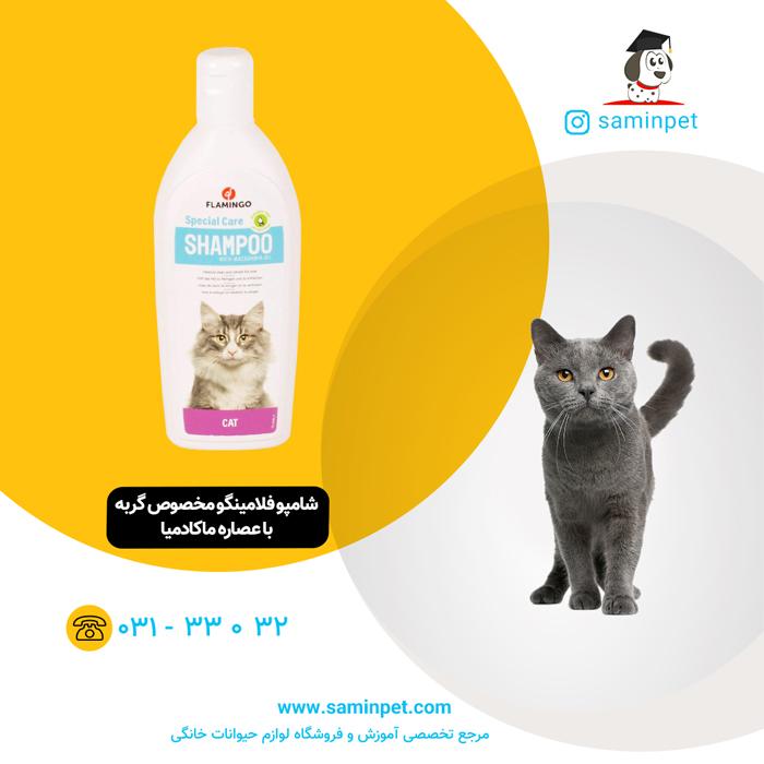 شامپو فلامینگو مخصوص گربه