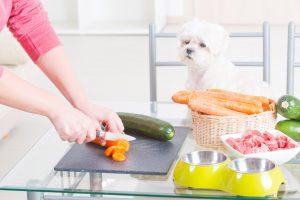 سبزیجات در غذای سگ