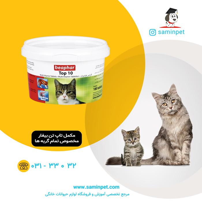 قرص مولتی ویتامین TOP 10 بیفار مخصوص گربه