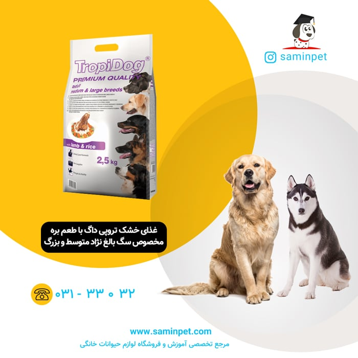 غذاخشک تروپی داگ مخصوص سگ بالغ نژاد متوسط و بزرگ