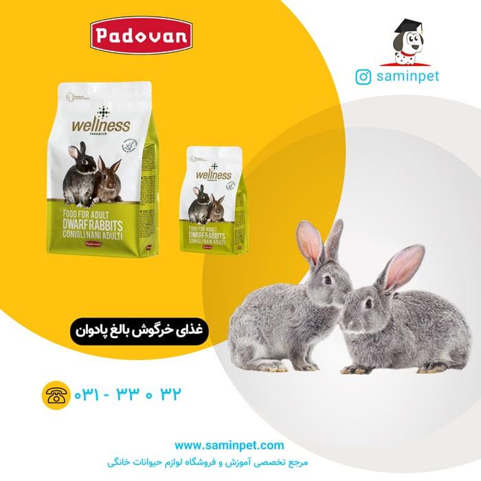 غذای خرگوش بالغ پادوان با کیفیت سوپرپرمیوم