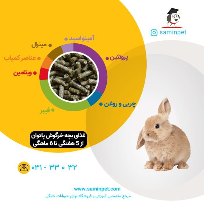 غذای بچه خرگوش پادوان با کیفیت سوپرپرمیوم