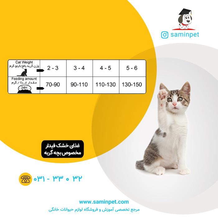 غذای خشک بچه گربه فیدار