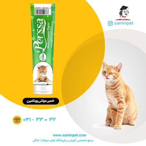 خمیر مولتی ویتامین پرسا مخصوص گربه