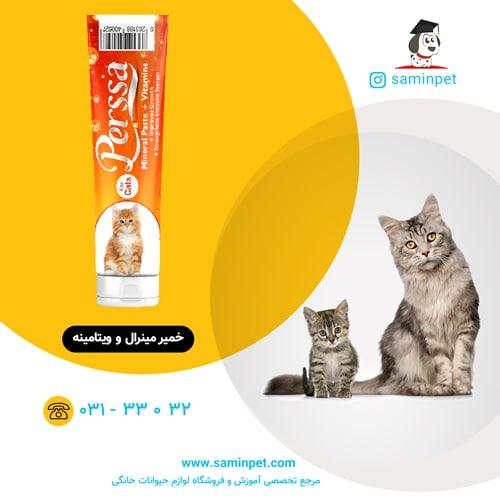 خمیر مینرال و ویتامینه گربه پرسا
