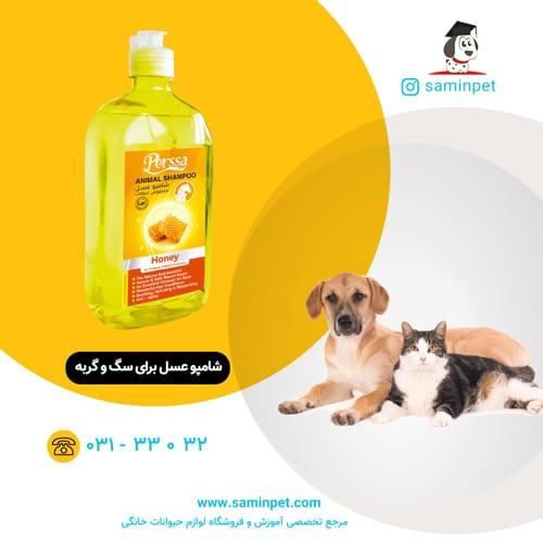 شامپو عسل پرسا برای سگ و گربه