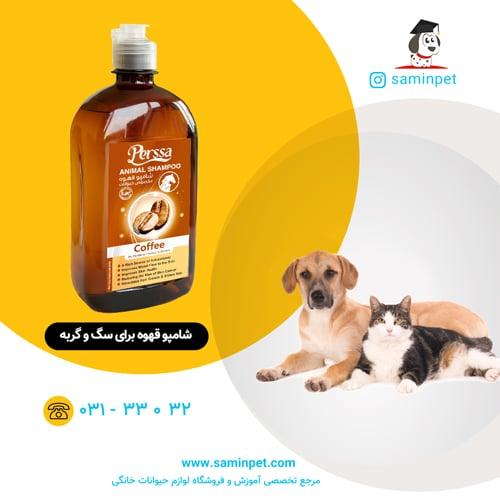 شامپو قهوه پرسا برای سگ و گربه