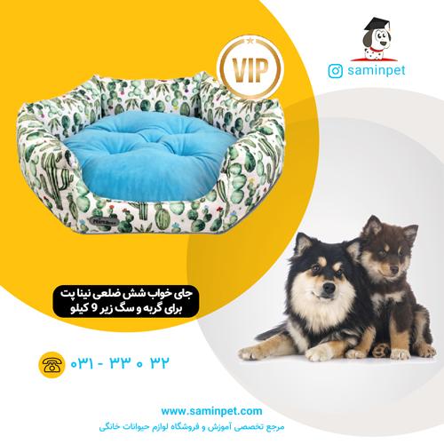 جای خواب شش ضلعی نینا پت طرح کاکتوس برای گربه و سگ زیر 9 کیلو