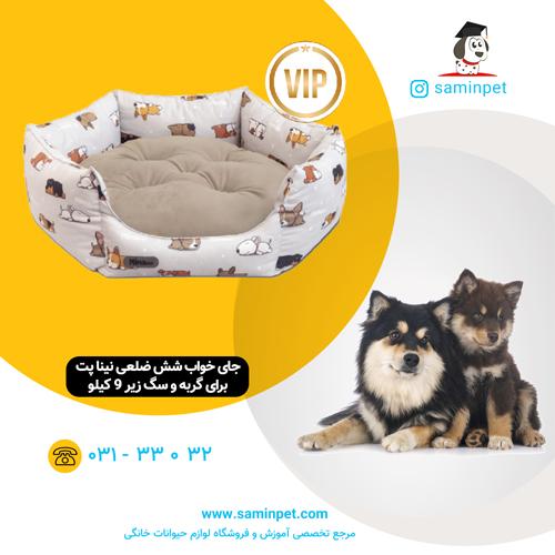 جای خواب شش ضلعی نینا پت طرح سگ خواب آلود برای گربه و سگ زیر 9 کیلو