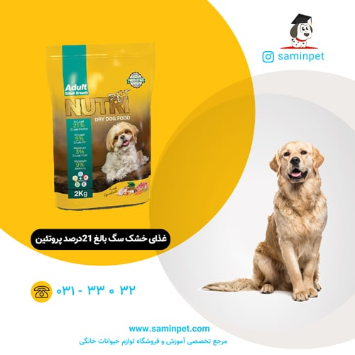 غذای خشک سگ بالغ نژاد کوچک 21درصد پروتئین نوتری پت