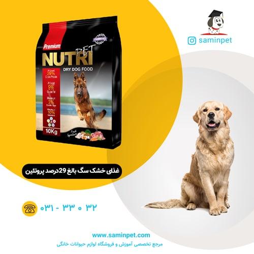 غذای خشک سگ بالغ 29درصد پروتئین نوتری پت
