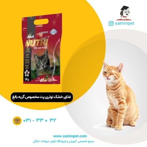 غذای خشک گربه بالغ 29درصد پروتئین نوتری پت