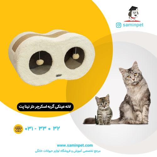 لانه عینکی گربه اسکرچر دار نینا پت