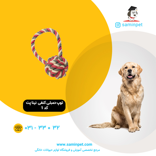 اسباب بازی کنفی نینا پت مدل توپ دمبلی مخصوص سگ