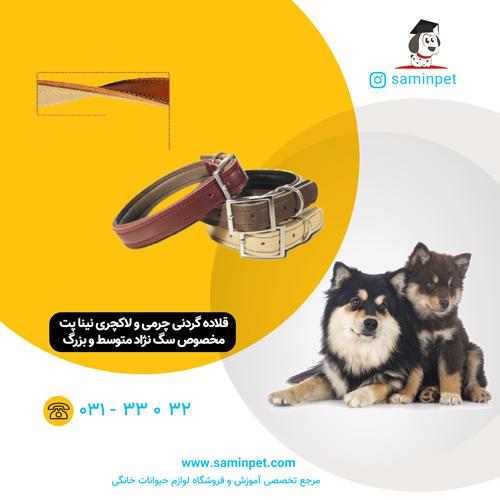 قلاده گردنی چرمی و لاکچری نینا پت برای سگ های 15 تا 25 کیلو