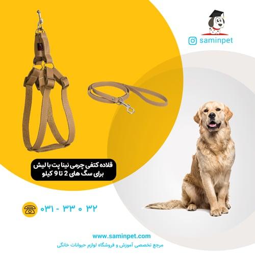قلاده کتفی چرمی نینا پت برای سگ 2 تا 9 کیلو با لیش