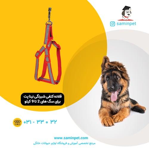 قلاده کتفی شبرنگی نینا پت برای سگ 2 تا 9 کیلو