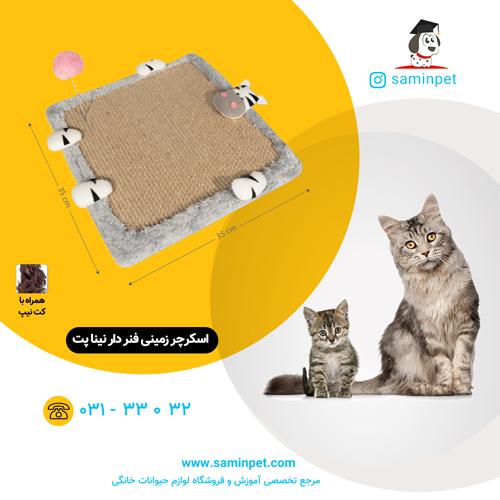 اسکرچر زمینی فنر دار نینا پت مخصوص گربه