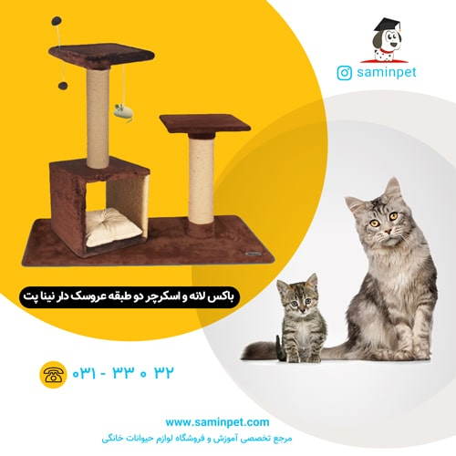 باکس لانه و اسکرچر دو طبقه نینا پت مخصوص گربه