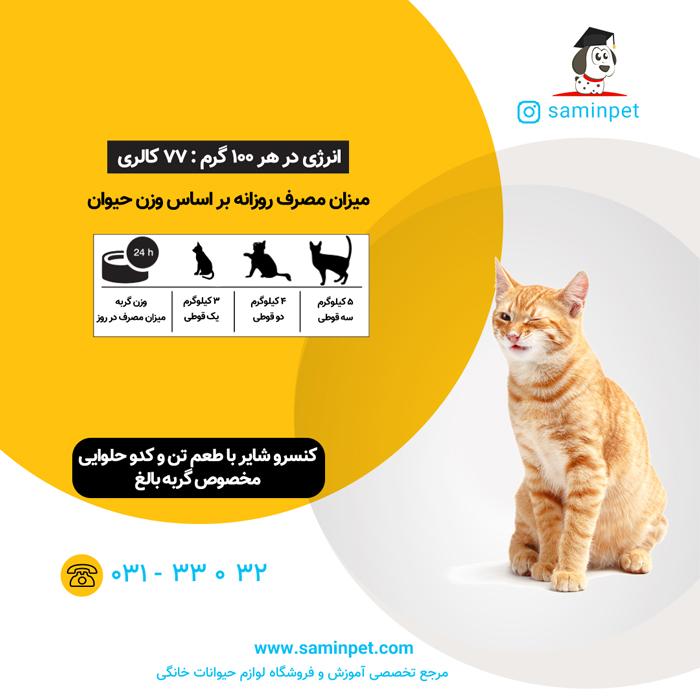 کنسرو شایر با طعم تن و کدوحلوایی مخصوص گربه بالغ