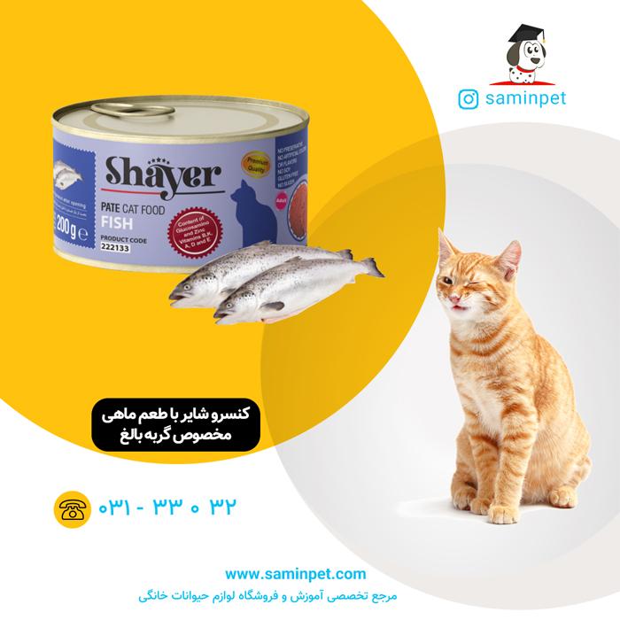 کنسرو شایر با طعم ماهی مخصوص گربه