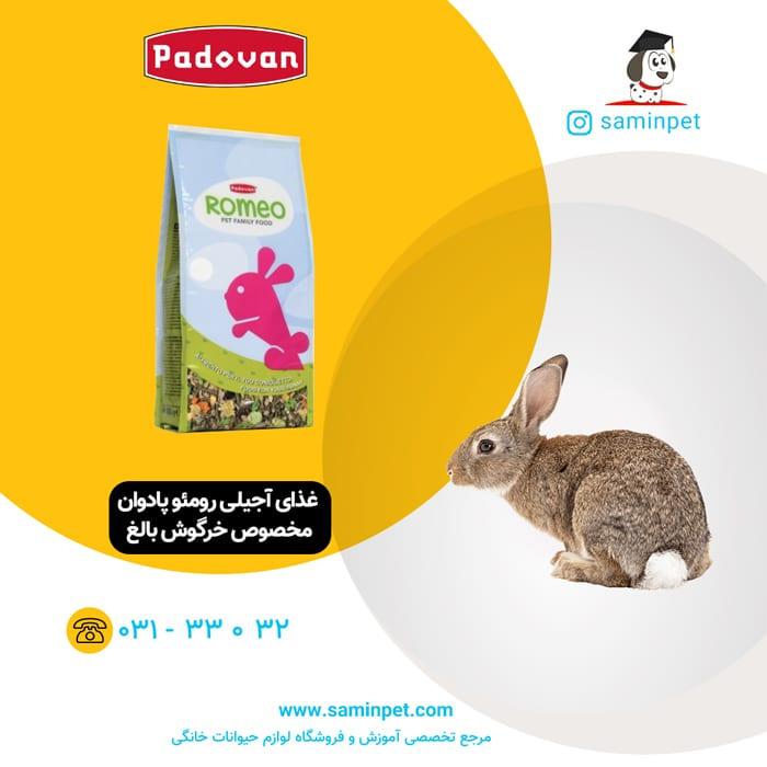 غذای آجیلی رومئو پادوان مخصوص خرگوش بالغ