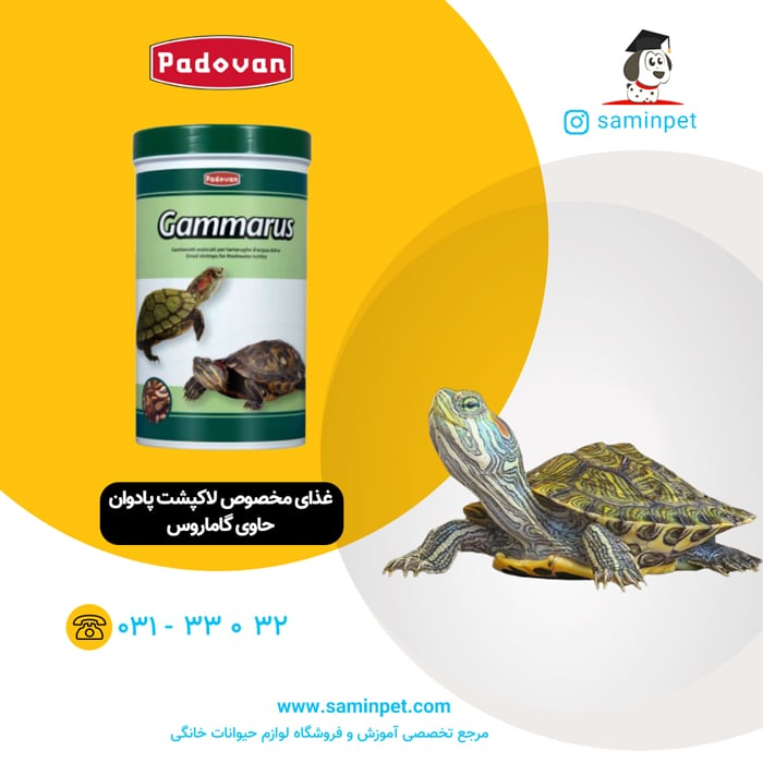 غذای مخصوص لاکپشت پادوان حاوی گاماروس