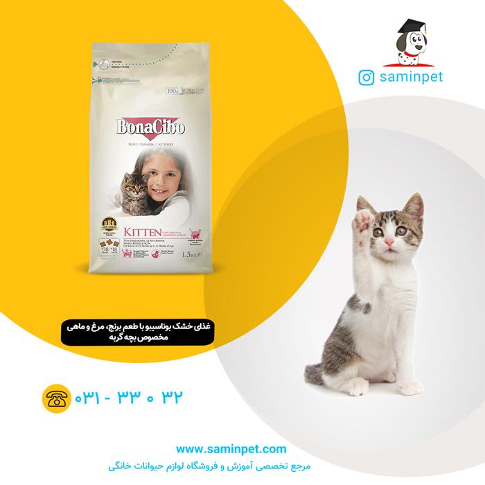 غذای خشک بوناسیبو مخصوص بچه گربه با طعم مرغ و ماهی