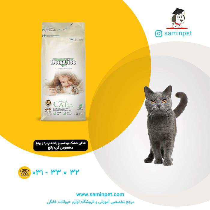 غذای خشک بوناسیبو مخصوص گربه بالغ با طعم بره و برنج