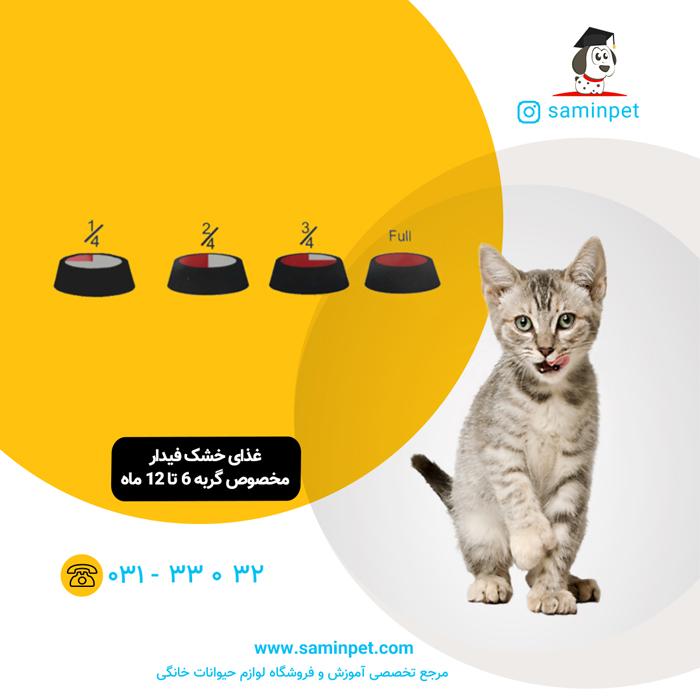 غذای خشک فیدار مخصوص گربه 6 تا 12 ماه