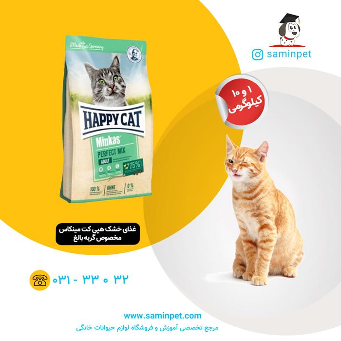 غذای خشک هپی کت مینکاس مخصوص گربه بالغ