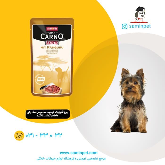 پوچ اگزوتیک گرن کارنو با طعم کانگرو مخصوص سگ بالغ
