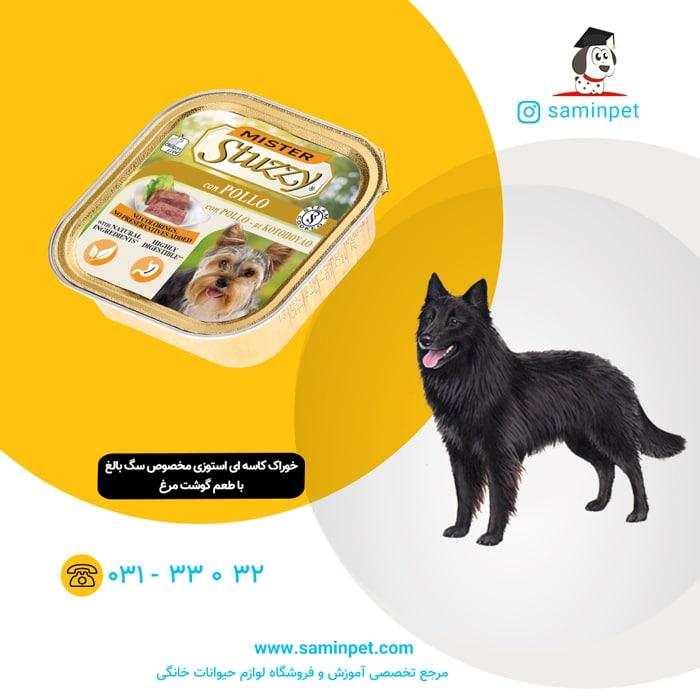 خوراک کاسه ای استوزی با طعم گوشت مرغ مخصوص سگ بالغ