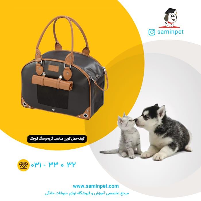 کیف حمل کوین مخصوص گربه و سگ نژاد کوچک