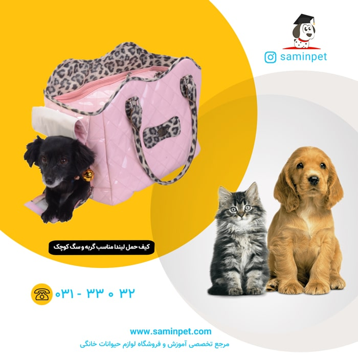کیف حمل لیندا مخصوص گربه و سگ نژاد کوچک