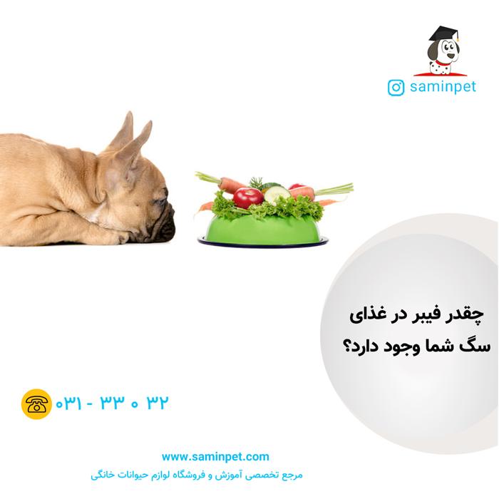 چه غذایی به سگم بدهم
